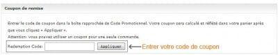 Il est possible d'appliquer un code coupon sur vos achats Dresslink
