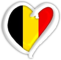 Le drapeau de la belgique et mes conseils pour aller sur AliExpress lorsque l'on vit en Belgique !